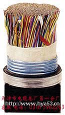 钢带铠装通信电缆 HYA53  HYA53