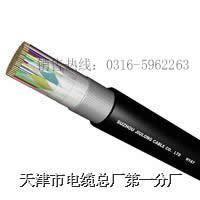 HYAC电缆 10*2*0.6  HYAC 10*2*0.6