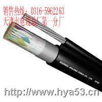 HYAC电缆 10*2*0.8  HYAC电缆 10*2*0.8