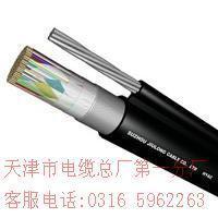 空中吊线电缆 hyac 50*2*0.4 空中吊线电缆 hyac 50*2*0.4