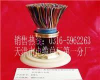 【HYA  1800×2×0.4】导体直径×0.4 0.5 热卖电话0316-5962263  【HYA  30×2×0.4】导体直径×0.4 0.5 0.6 0.7 0.8