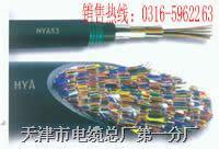 WDZ-HYAT22低烟无卤铠装阻燃通信电缆WDZ-HYAT22(低烟无毒阻燃电缆)  WDZ-HYAT22 WDZ-HYAT22