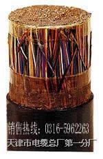 信号电缆PTYA22-52芯 信号电缆PTYA22-52芯