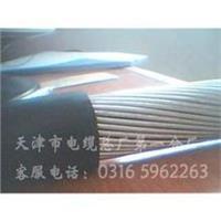 电缆报价自承式通讯电缆HYAC 电缆报价自承式通讯电缆HYAC
