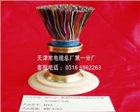 天津市电缆总厂第一分厂电话0316-5962263 电缆   hya   kvvp     djyvp    mkvvp