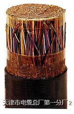 HYAT 冲油防水电缆通讯电缆/大对数电缆 HYAT
