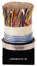 大对数软电缆  HYV