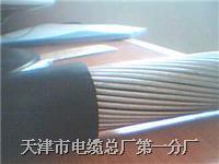 钢丝铠装通信电缆 WDZ HYA53 30*2*0.4 WDZ HYA53 30*2*0.4