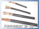 DJYVP-300/500 屏蔽电缆结构图    DJYVP
