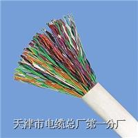 通信电缆规格型号大全 HYA HYAC HYAT HPVV HJVV