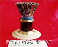室外弱电电线,电缆,HYV22-10-20-30-50-100-200-300-500-600*2*0.4-0.5-0.6-0.7-0.8-0.9-1.0 HYV22