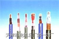 (ia-DJYVP)本安型电子计算机用信号电缆 (ia-DJYVP)