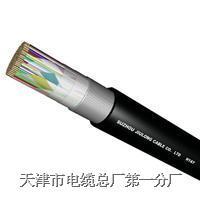 【HYAC 20*2*0.8】自承式电缆HYAC 20*2*0.8电缆  HYAC 20*2*0.8