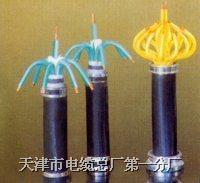 KYJVR 电缆 KYJVR多种规格和型号的产品我最全 欢迎临咨询和洽谈 KYJVR