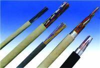 DJVVP2电缆 DJVVP2电缆大全 我厂专业生产计算机电缆 价格咨询 DJVVP2