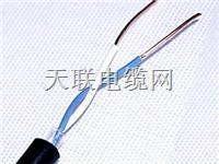 KVVP-8×1.0耐油、耐热、屏蔽阻燃电缆 KVVP-8×1.0耐油、耐热、屏蔽阻燃电缆