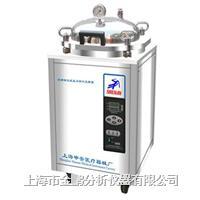 LDZX-30FAS30立升不锈钢立式灭菌器 LDZX-30FAS30