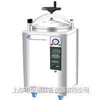 LDZX-50KBS50立升不锈钢立式灭菌器 LDZX-50KBS50