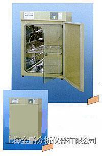 DNP-9022型电热恒温培养箱(20L)  DNP-9022型