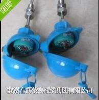 無固定裝置一體化熱電偶/熱電阻  WRNB-120  WZPB-121