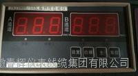 JNJ3900/55双通道瓦振监测仪