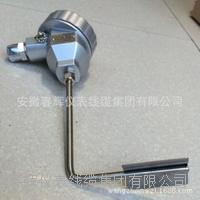 電伴熱專用管壁式防爆熱電阻 WZPK-24B
