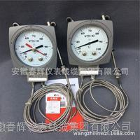 WTZK-03溫度控制器 WTZK-03溫度控制器
