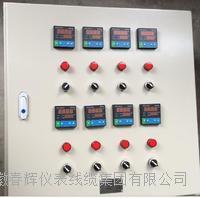 电伴热控制箱 KZBR  CH-KZBR-3