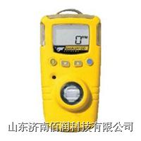 BW气体检测仪 BW