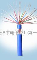 地埋通信电缆是什么线  HYA22