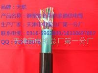 矿用阻燃信号电缆-技术指导 MHYVP32 MHYA32 MHY32 MHYAV
