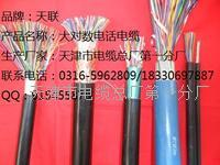 HYAC-索道通信电缆HYAC销量 HYAC
