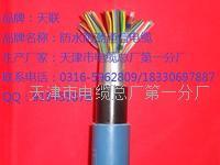 HYAC-索道通信电缆HYAC生产厂商 HYAC