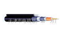 KFV-22 - 0.75-10mm2钢带铠装耐高温电缆每米多少元 KFV-22 - 0.75-10mm2
