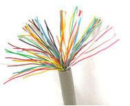 双屏蔽计算机电缆DJYPVP厂价 DJYPVP
