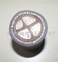 矿用控制电缆MKVVP22保电阻-DLHYA矿用控制电缆MKVVP22