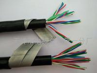 铝护套铁路信号电缆PTYL23制造商