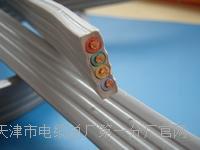 铠装RS-485通讯电缆1*2*0.75实物大图