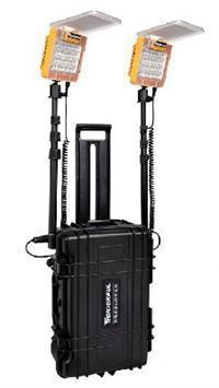 便携式应急节能工程照明灯LED-22N24-2 LED-22N24-2