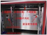 热空气老化箱YSGW-100现货供应