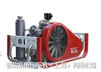 CNG汽车改装检测高壓壓縮機 PGA42-2.0
