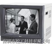 黑白监视器