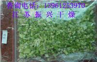 果蔬脱水干燥机 DWT