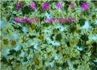黄菊花专用烘干机 GRF