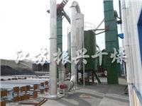 草酸钙专用烘干机 PLG