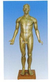 人体针灸穴位模型|铜人针灸模型 GD-0401A