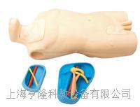 中心静脉注射穿刺躯干训练模型KAH-ZXA KAH-ZXA