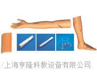 KAH-Y100外科综合技能训练组合模型 KAH-Y100