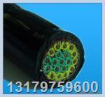 H07R-F風能發電用耐油型接地保護電纜  H07R-F風能發電用耐油型接地保護電纜