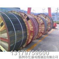 硅橡胶护套耐高温电力电缆 YGC
